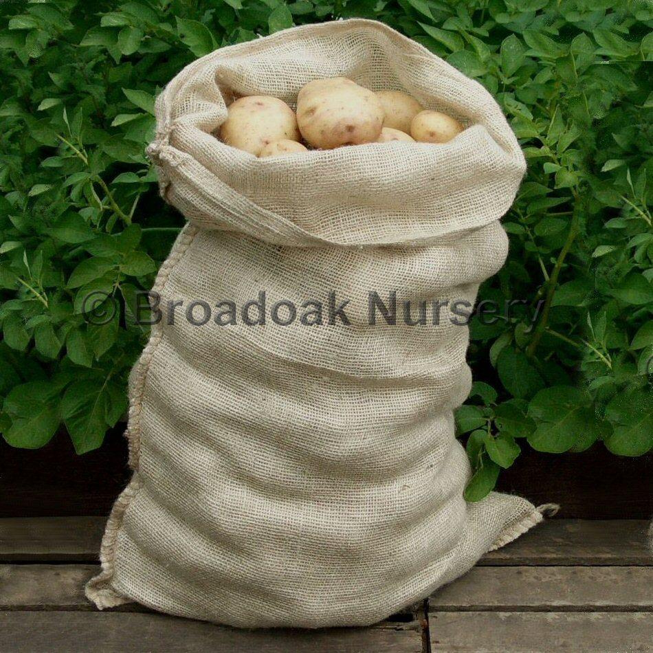 10 Jute Hessian Sacks 25kg Potato Sacks Broadoak Nursery