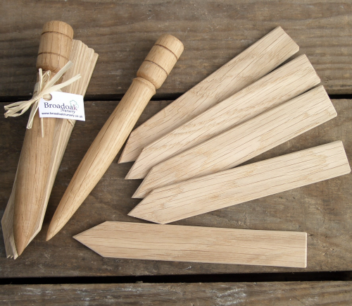 Oak Plant Markers / Labels with Dibblet (5 pack plus dibblet)