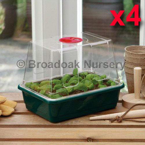 4 x Mini High Dome Propagators, Quarter Size Seed Tray & Vented Lid, Windowsill