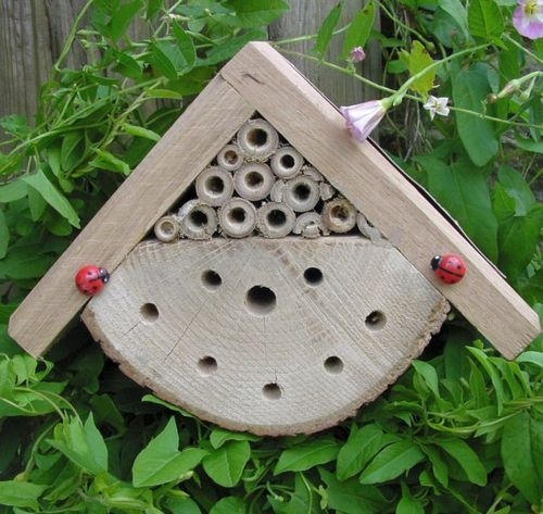 Bug Box 2000 Beneficial Insect Habitat Ladybird Lacewing Solitary Bees