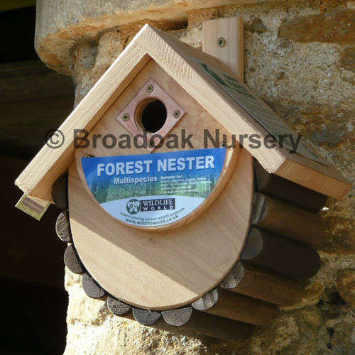 Forest Nest Box - Multi Species Wildlife Nester for Garden Birds