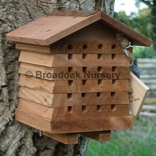 Solitary Bee Hive - Nest Box for Solitary, Mason, Leafcutter Bees
