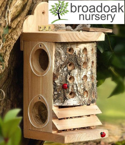 LADYBIRD & LACEWING LOG -Beneficial Insect Habitat Nest