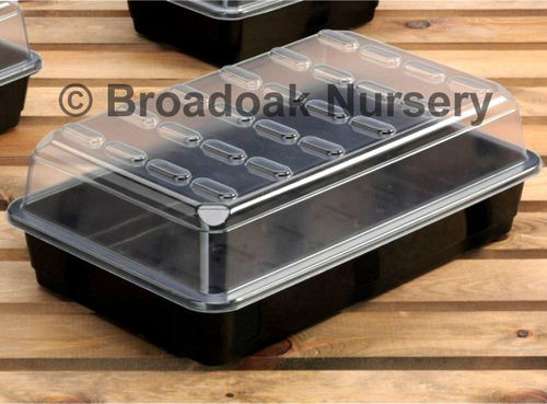 Large / Full Size Propagator for Seeds & Cuttings