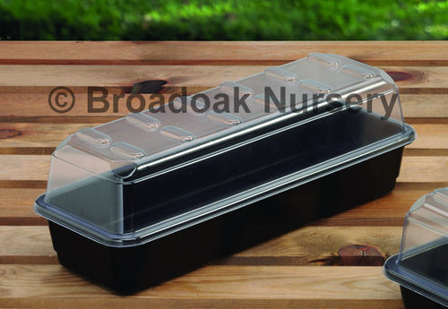 Narrow Windowsill Propagator for Seeds & Cuttings