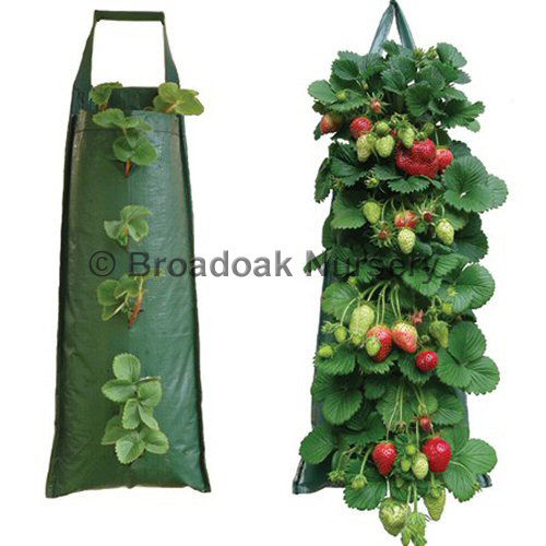 2 Strong Hanging Flower Pouches, Herb, Strawberry Planters