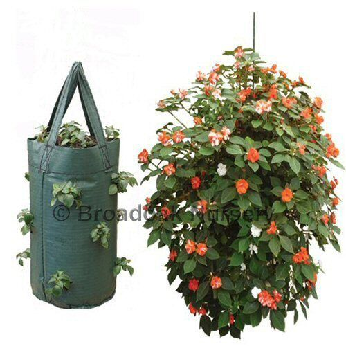 1 Strong Hanging Growbag, Tomato, Flower, Herb, Strawberry Planter