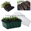 Rootrainers Propagator System, Compact Rapid - Seed Tray, Lid, Inserts