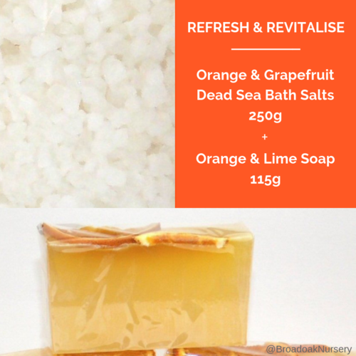 Orange & Lime Handmade Soap + Orange & Grapefruit Dead Sea Bath Salts