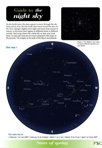 Laminated Field Guide the NIGHT SKY