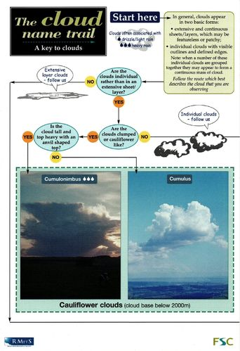 Laminated Field Guide the CLOUD NAME TRAIL