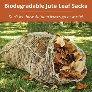 Leaf_Sacks